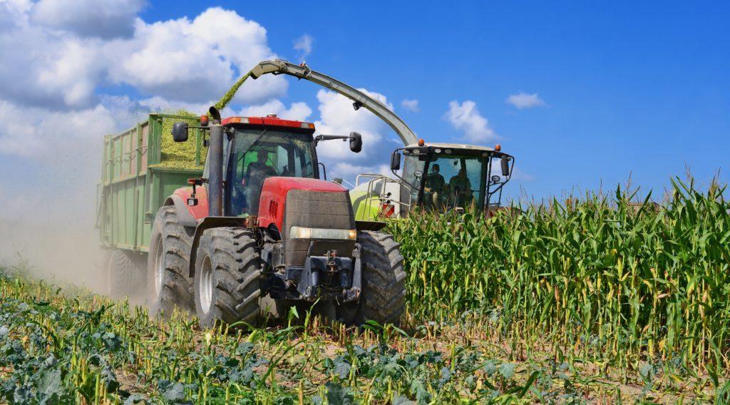 chopping_corn_silage_shutterstock_484722151_min_1024x568_1024x568